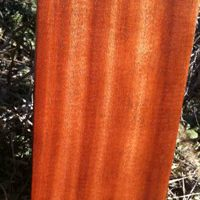 Would Utile/Sipo Lumber Be a Good Mahogany Alternative for Your Project?