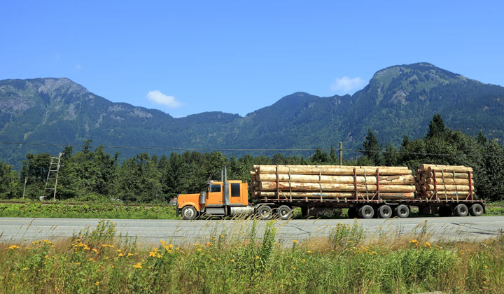 large lumber truck parked beside highway near mountains
