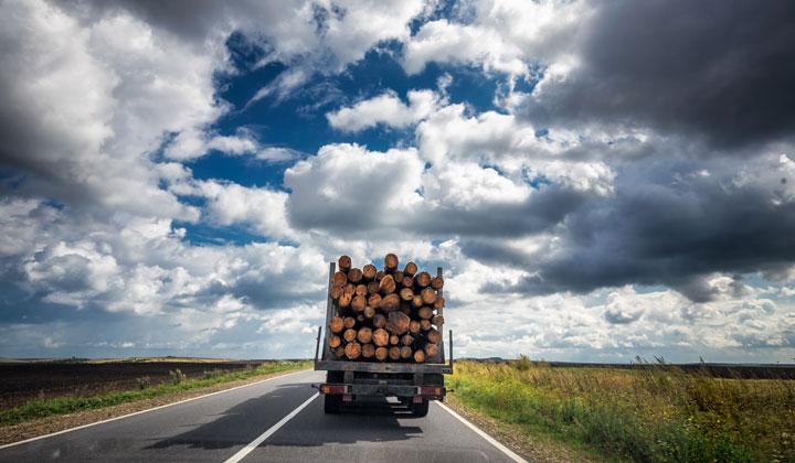 lumber log truck driving into horizon
